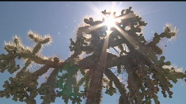 Solano among areas affected by heat advisory