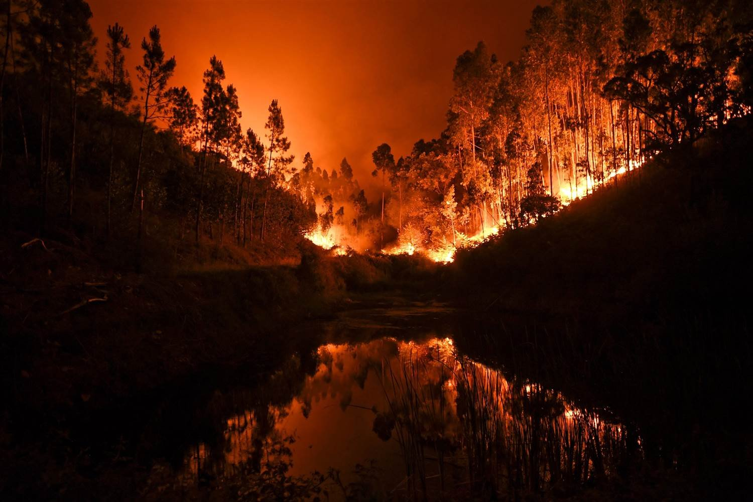 A wildfire is reflected in a stream at Penela, Coimbra, central Portugal. PATRICIA DE MELO MOREIRA / AFP - Getty Images