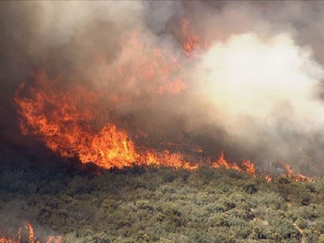 Spreading wildfire in Arizona forces evacuation of thousands