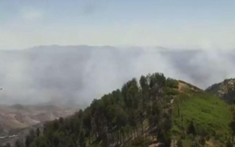 Burro Fire near Tucson closes road to Mt. Lemmon, evacuations begin
