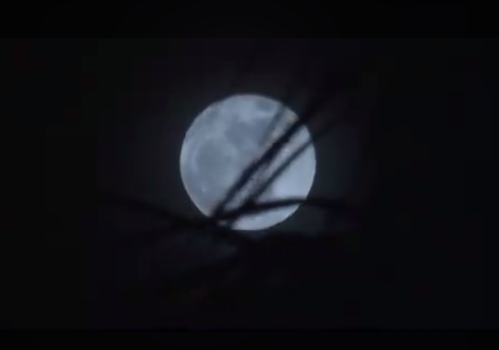 Supermoon lights up Southland skies