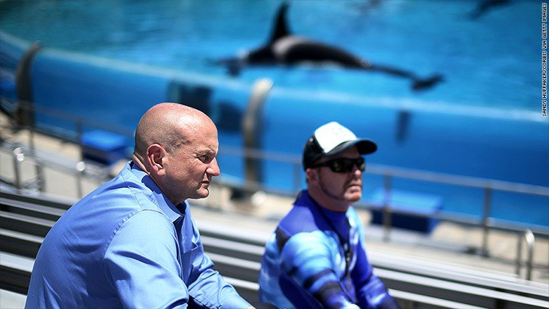 Joel Manby quits as SeaWorld CEO