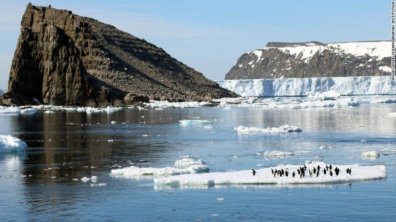 'Mega-colony' of 1.5m penguins discovered on Antarctica's remote Danger Islands