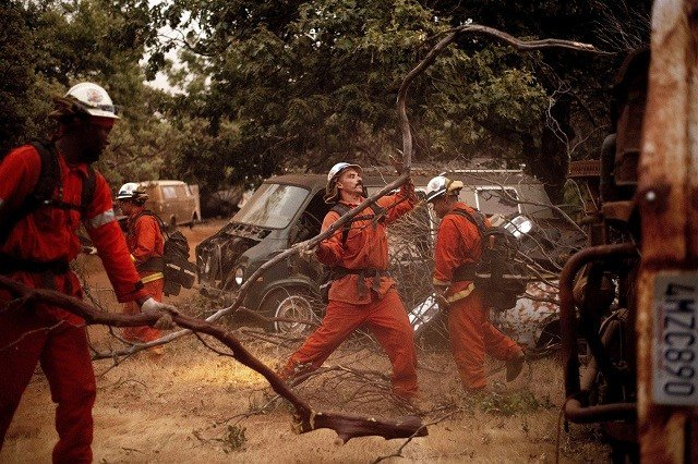 Inmate firefighters clear brush to create a fire break while battling the Ferguson Fire in unincorporated Mariposa County, California, on Monday, July 16, 2018.Noah Berger / AP